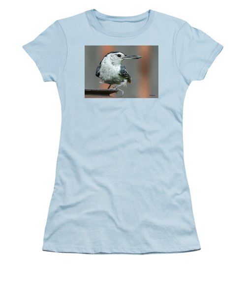 White-breasted Nuthatch With Sunflower Seed Women's T-Shirt (Athletic Fit)