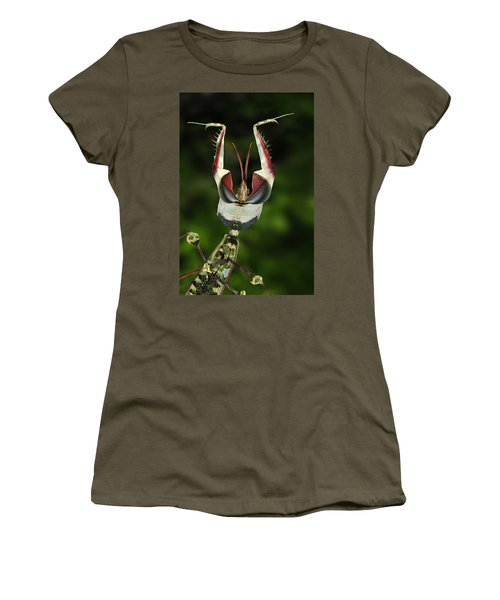 Devils Praying Mantis In Defensive Women's T-Shirt