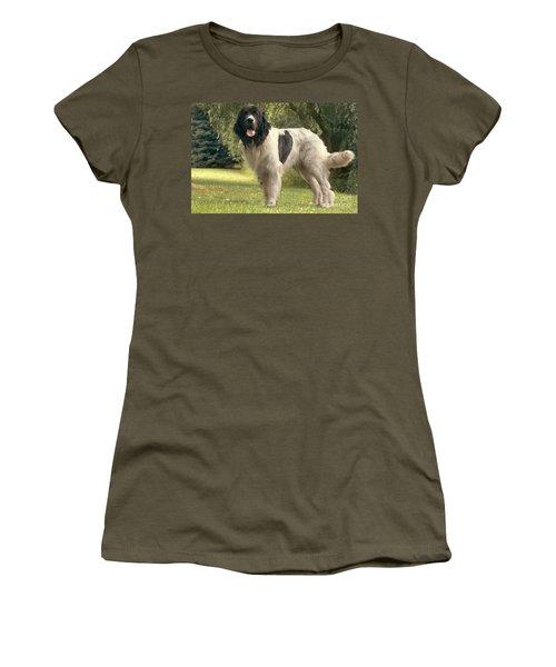 Landseer Dog Women's T-Shirt