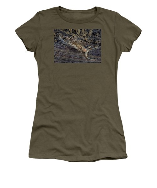Nudibranch Sitting On A Pen Shell Women's T-Shirt