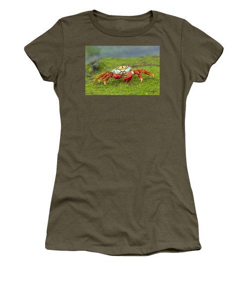 Sally Lightfoot Crab Galapagos Islands Women's T-Shirt