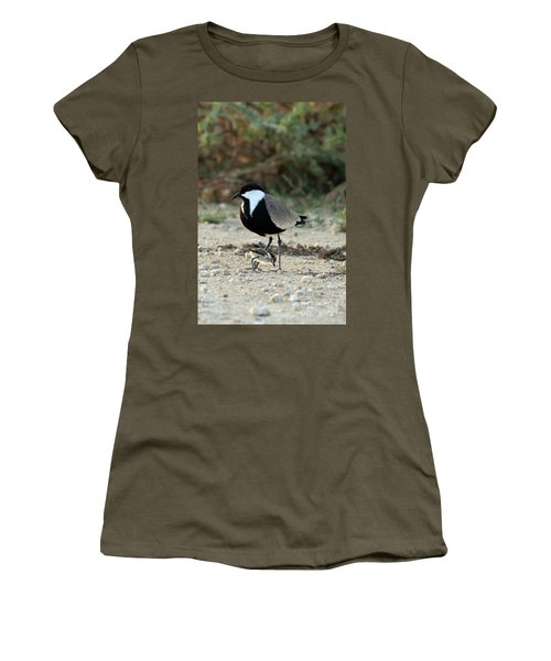 Spur-winged Plover And Chick Women's T-Shirt (Athletic Fit)