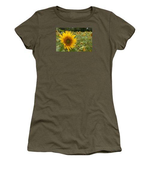 Sun Flower Fields Women's T-Shirt (Junior Cut) by Miguel Winterpacht