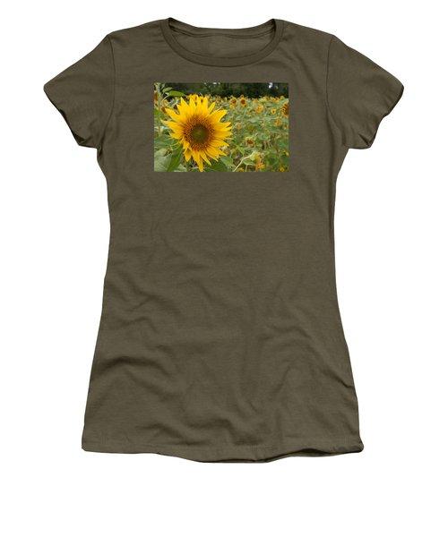 Sun Flower Fields Women's T-Shirt