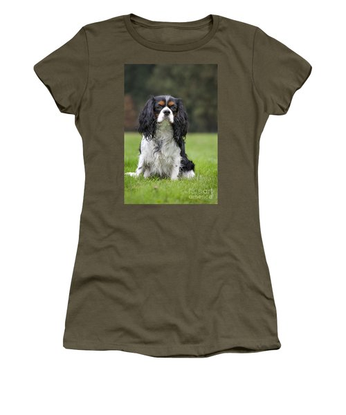 111216p255 Women's T-Shirt