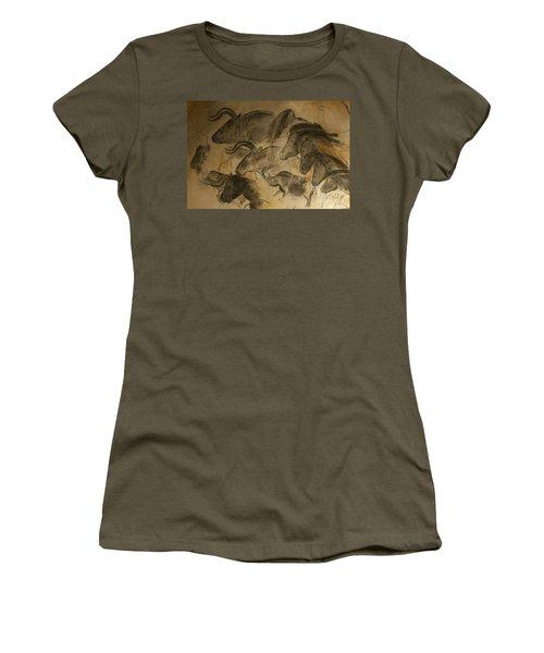 131018p051 Women's T-Shirt (Junior Cut) by Arterra Picture Library