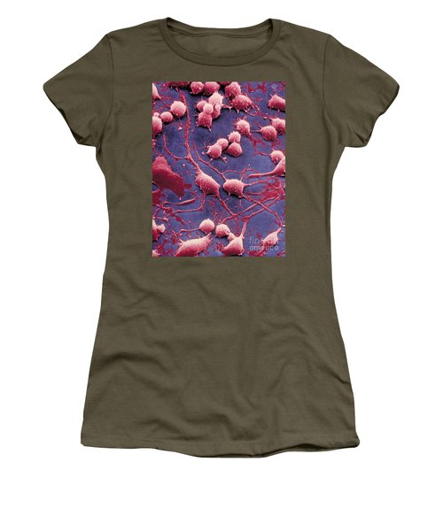 Dendrites Women's T-Shirt