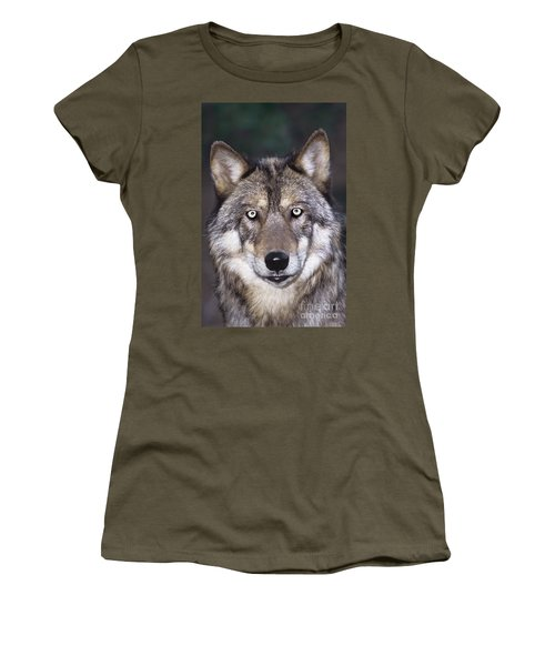 Gray Wolf Portrait Endangered Species Wildlife Rescue Women's T-Shirt