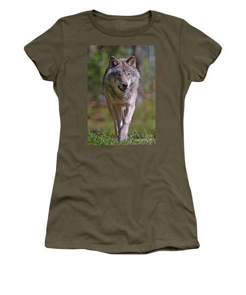 Women's T-Shirt (Junior Cut) featuring the photograph Timber Wolf  by Wolves Only