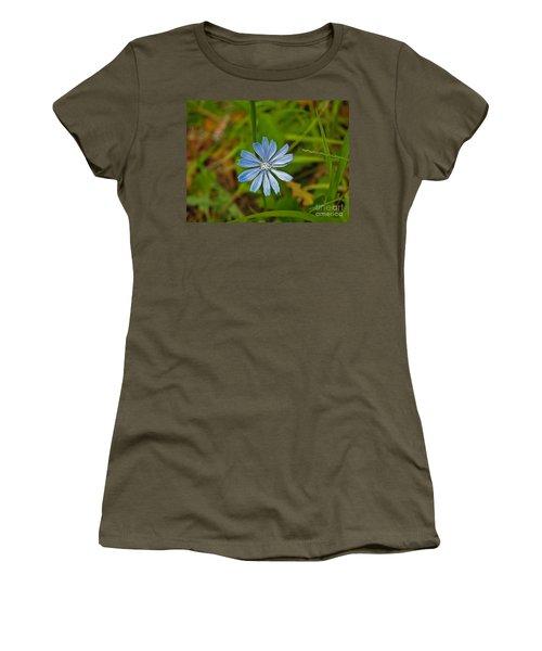 Blue Chicory Flower  Women's T-Shirt