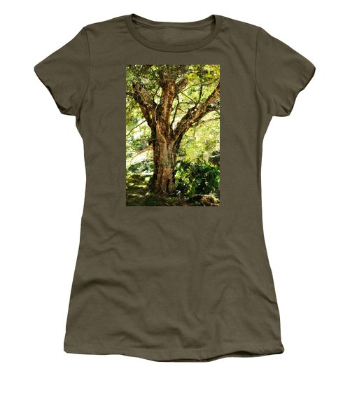 Kingdom Of The Trees. Peradeniya Botanical Garden. Sri Lanka Women's T-Shirt