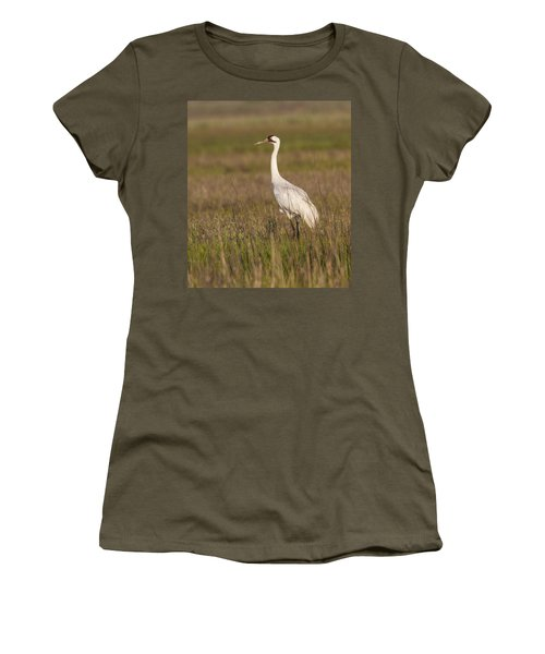 Whooping Crane Women's T-Shirt (Athletic Fit)