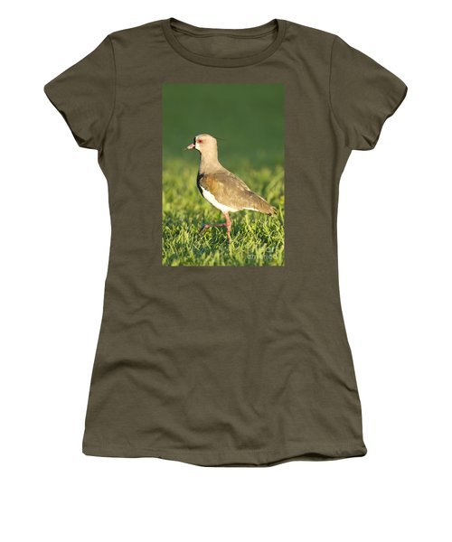 Southern Lapwing Women's T-Shirt (Athletic Fit)