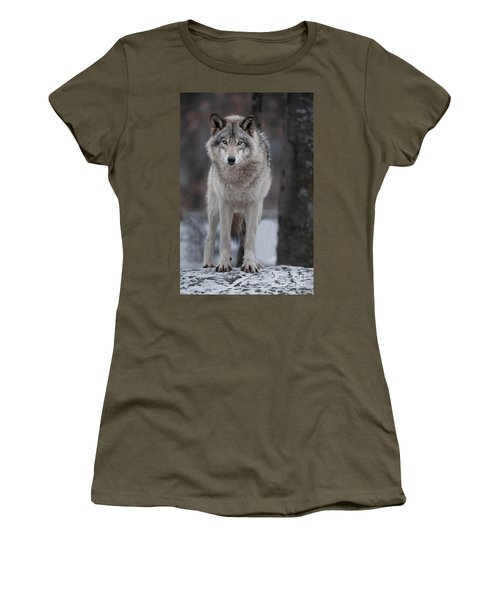 Timber Wolf  Women's T-Shirt
