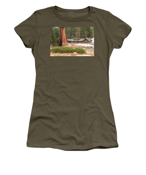 A Giant Among Trees Women's T-Shirt (Athletic Fit)