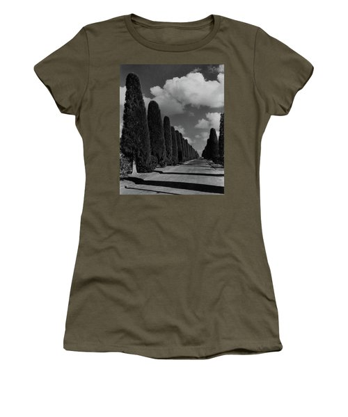 A Street Lined With Cypress Trees Women's T-Shirt