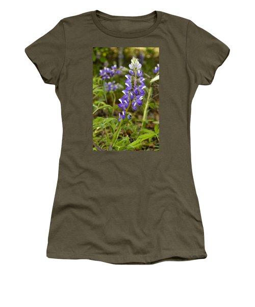 Alaskan Lupine In Denali Park Women's T-Shirt