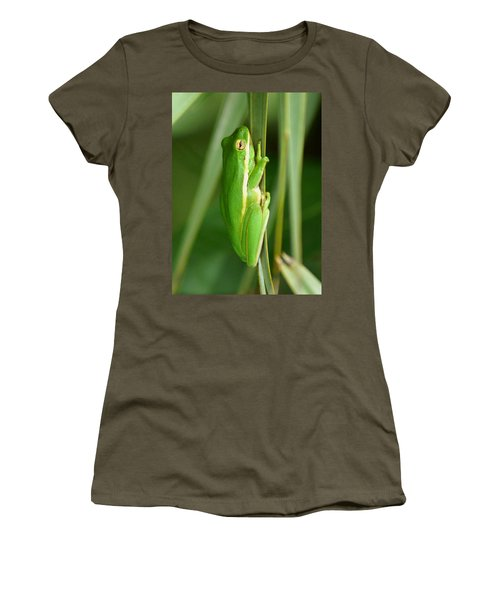 American Green Tree Frog Women's T-Shirt (Junior Cut) by Kim Pate