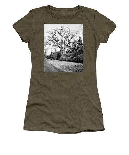 An Elm Tree At The Side Of A Road Women's T-Shirt