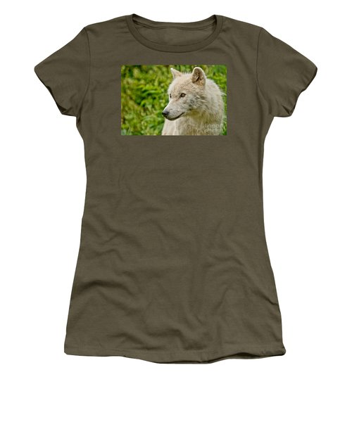 Arctic Wolf Pictures 241 Women's T-Shirt