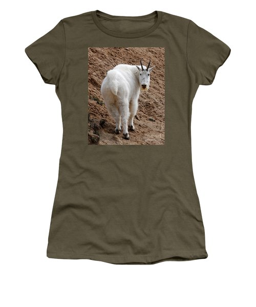 Women's T-Shirt (Junior Cut) featuring the photograph Are You Following Me by Vivian Christopher
