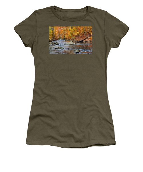 Autumn At The Black River Women's T-Shirt (Junior Cut) by Dave Mills