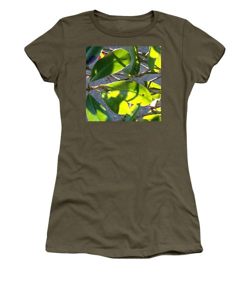 Backlit Leaves, Afternoon Light, Late Women's T-Shirt