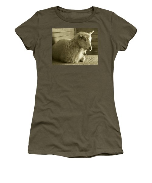 Barn Life Women's T-Shirt