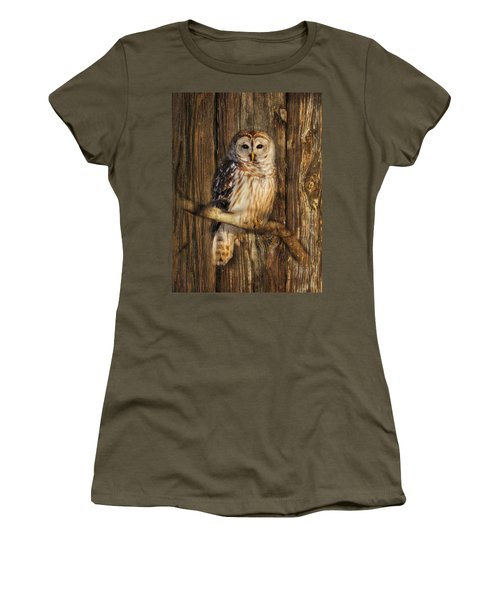 Barred Owl 1 Women's T-Shirt (Junior Cut) by Lori Deiter