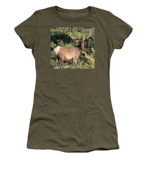 Battle Scars Women's T-Shirt (Athletic Fit)