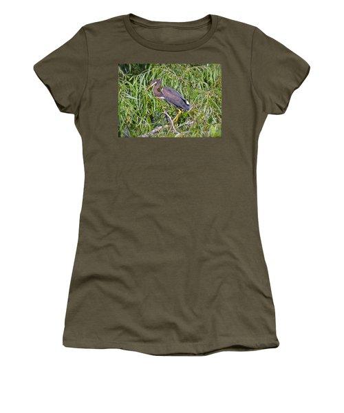 Beautiful Tricolored Heron Women's T-Shirt (Junior Cut) by Carol  Bradley