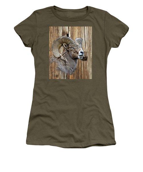 Bighorn Sheep Barnwood Women's T-Shirt (Junior Cut) by Steve McKinzie