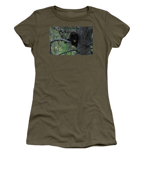 Black Bear Cub In Tree Women's T-Shirt