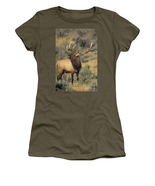 Bull Elk In Rut Bugling Yellowstone Wyoming Wildlife Women's T-Shirt (Athletic Fit)