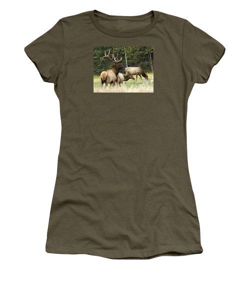 Bull Elk With His Harem Women's T-Shirt (Junior Cut) by Bob Christopher