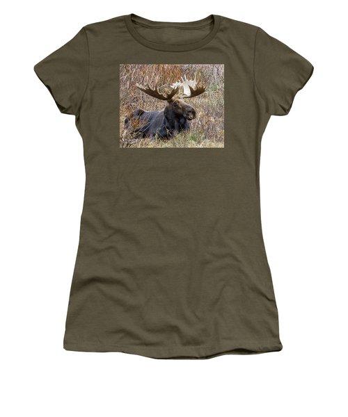 Bull Moose In Autumn Women's T-Shirt (Junior Cut) by Jack Bell
