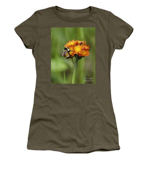 Bumble And Hawk Women's T-Shirt