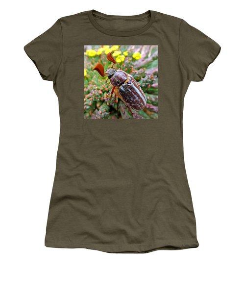 Chafer Beetle On Medusa Succulent 2 Women's T-Shirt