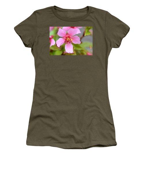 Cherry Blossom Women's T-Shirt (Junior Cut) by Lisa Phillips