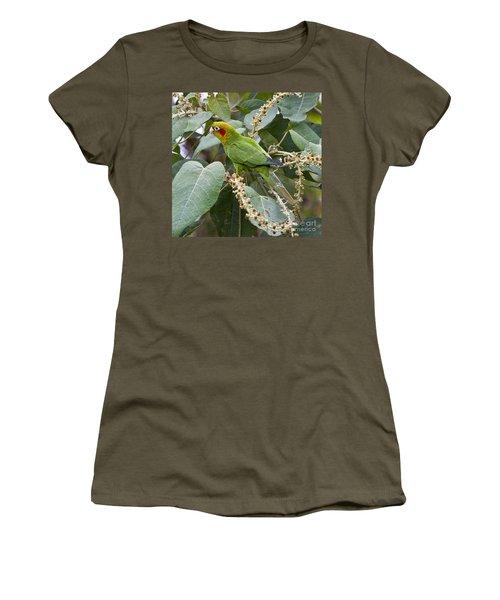 Chiriqui Conure 2 Women's T-Shirt (Athletic Fit)