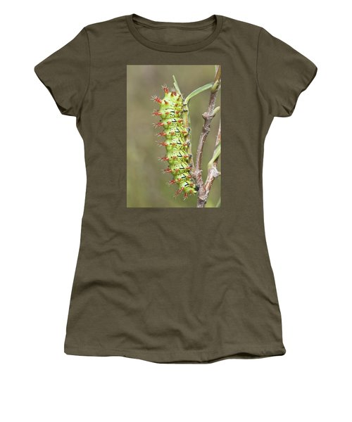 Close-up Of Moth Larva, Madagascar Women's T-Shirt