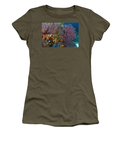 Colors Of Reefs Women's T-Shirt