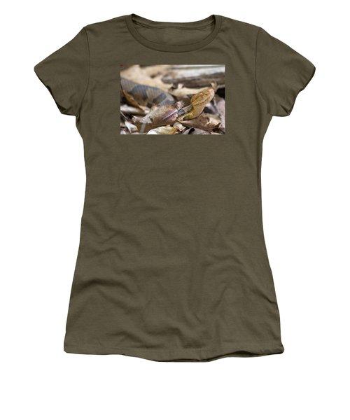 Copperhead In The Wild Women's T-Shirt (Junior Cut) by Betsy Knapp