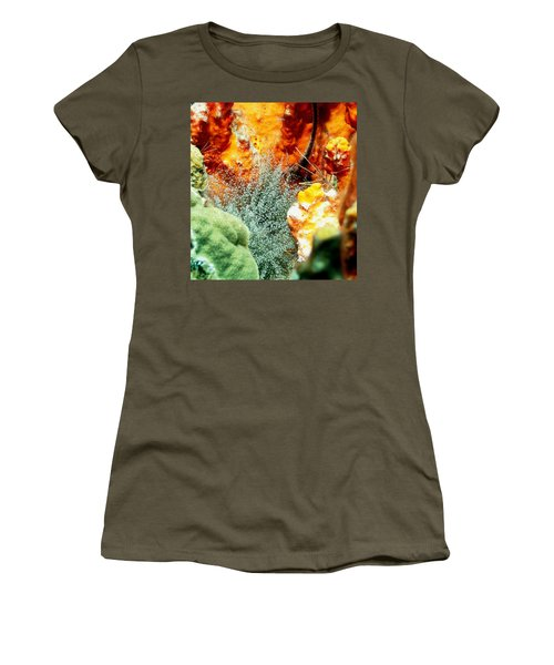 Women's T-Shirt (Junior Cut) featuring the photograph Corkscrew Anemone Grove by Amy McDaniel