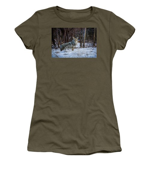 Coyote In The Meadow  Women's T-Shirt