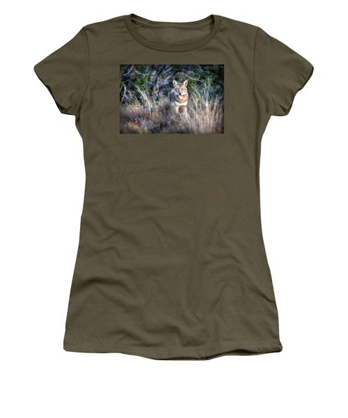 Coyote Stare Down Women's T-Shirt