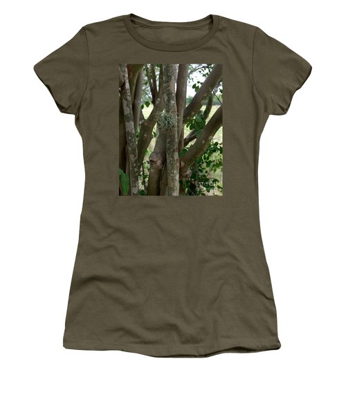 Crape Myrtle Growth Ball Women's T-Shirt (Junior Cut) by Peter Piatt