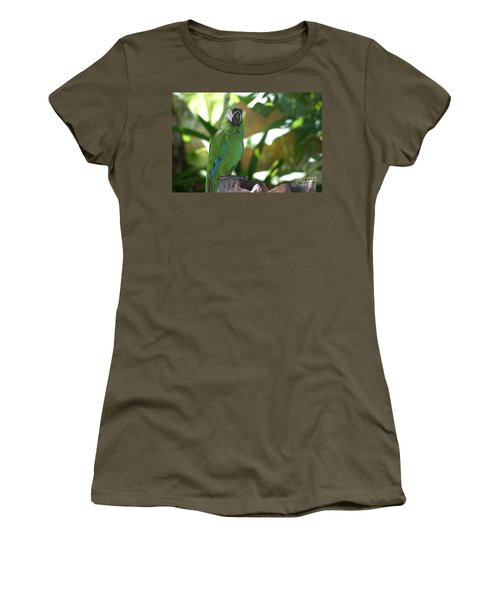 Curacao Parrot Women's T-Shirt (Junior Cut)