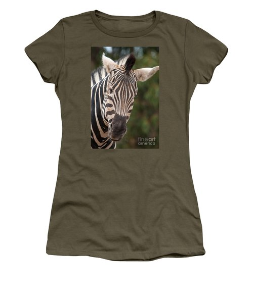 Curious Zebra Women's T-Shirt