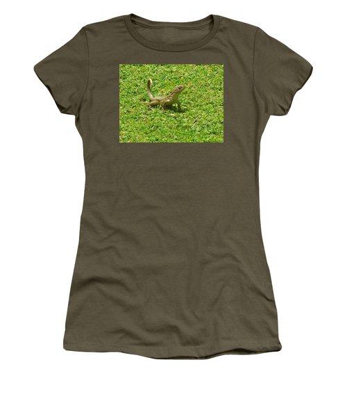 Curly-tailed Lizard Women's T-Shirt (Junior Cut) by Ron Davidson